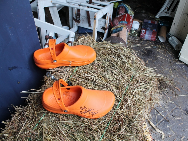 <p>At Grandma&#39;s House, a pair of Crocs shoes signed by celebrity chef Mario Batali washed to the doorway after floods during Hurricane Sandy.</p>