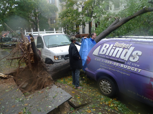 <p>A massive tree toppled to the street on Garfield Place between Sixth and Seventh avenues in Park Slope about 1 p.m. on Oct. 29, 2012 as Hurricane Sandy bore down on New York.</p>