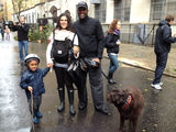 Parents, Dog Owners First to Hit Ft. Greene Streets After Hurricane Sandy