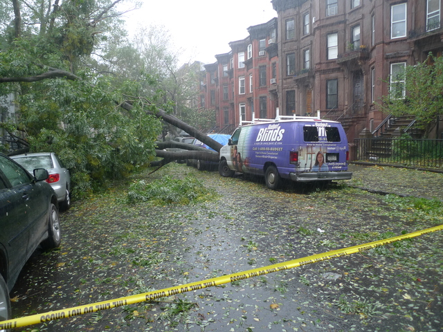 <p>A tree down on Garfield Place between Sixth and Seventh avenues. It fell about 1 p.m. Monday, before Hurricane Sandy made landfall.</p>
