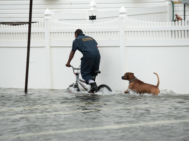 <p>A young man and his pitbull have fun in flood waters on Beach 29th Street in Far Rockaway on Monday October 29th, 2012.</p>