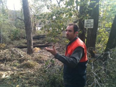 Hurricane Sandy uprooted trees and caused damage at Swindler's Cove, a restored natural habitat.