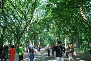 Visitors stroll through Central Park.