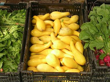 Radishes, squash and parsley are just some of the fresh produce available through community supported agriculture groups.