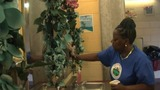 Brighton Beach Boardwalk Bathroom Worker Adds Touch of Beauty to Toilets