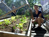 St. Mary's Urban Farm Reclaims the Land to Feed West Harlem Parish