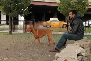 Christian Castro and his dog, Jenks, watch other dogs at the Logan Square Dog Park.