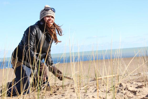 Dozens of people turned out to help plant nearly 30,000 indigenous plants at Loyola Beach.