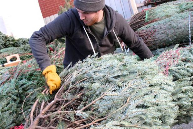 City Tree Delivery  is a full-service Christmas tree lot based at Big Star at 1531 N. Damen Ave. When the tree selling season ends Dec. 23, owner Adam Hohenstein and his team get to work on the next task: returning to the homes where they delivered trees and recycling them into mulch.