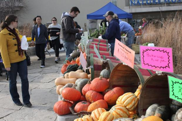 Temperatures reaching the 60s this weekend meant vendors at the Green City Farmers Market could set up outside.
