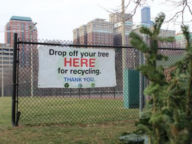 Christmas Tree Recycling Made Easier With North Center Drop-Off ...