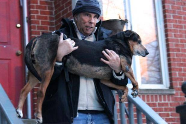 After a package containing a $400 dog wheelchair was stolen minutes after UPS dropped it off January 31, a Bucktown resident took his frustration to the streets and put up fliers asking if anyone had any information about the theft.  Though the package was not found, Toast Restaurant raised enough money over a two-week period to pay for a new wheelchair and gave the money to the dog's owner Thursday (Feb. 28).