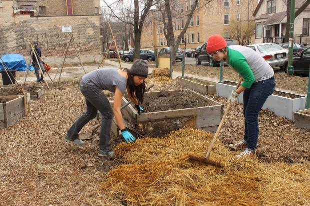 The Corner Farm gardens in Logan Square launch their growing seasons.
