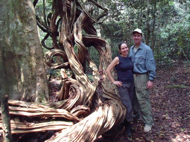 Drs. Dave Morgan and Crickette Sanz are married to their job (and each other). For more than a decade, at least six months of every year, he lives in a tent deep in the belly of a Congolese forest. During the summer, she joins him.