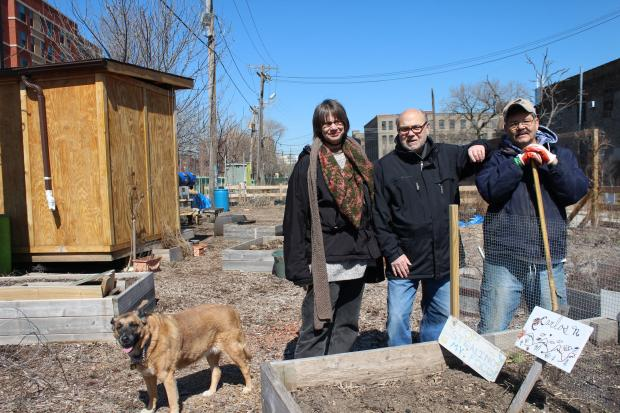 The GrowingStation, a neighborhood garden in Pilsen, was created in 2009. In 2006, the Illinois Environmental Protection Agency found high levels of lead at a site about 50 feet from the garden site. In December, the Illinois EPA found very high lead levels just 10 feet from the GrowingStation.