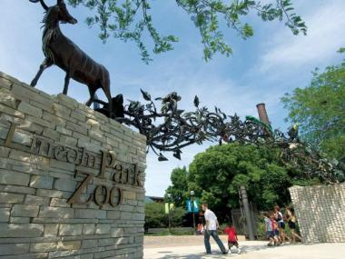 The Lincoln Park Zoo is opening up its grounds to adults 18 and up Friday.