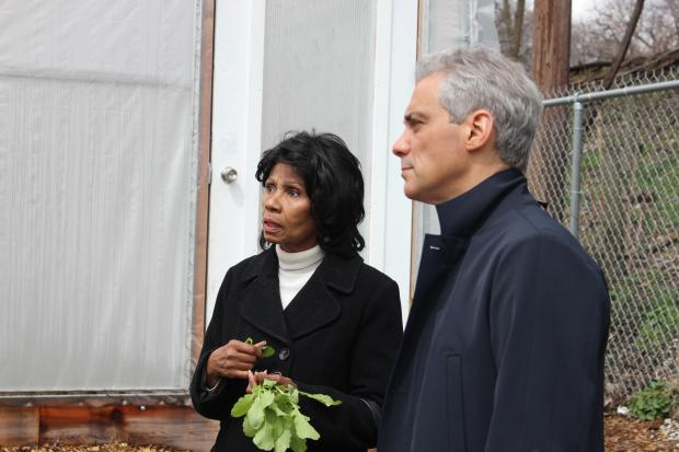 An urban farm in Englewood makes plans to expand thanks to the Chicago Neighborhood Now initiative.