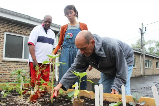 Volunteers in Rogers Park teach classes about how to grow vegetables and eat healthy food at the Westwood Manor greenhouse.