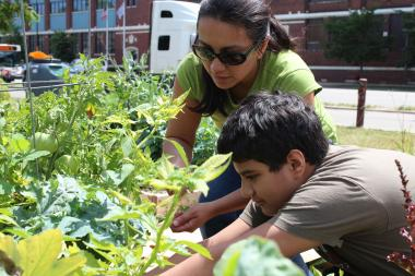 Anna Ahumada shows her son Andrew how to harvest produce at their plot in the McKinley Park Community Garden. (File photo)