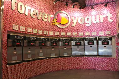"The CEO of Forever Yogurt hopes to expand ""crowdfranchising"" to new stores and other businesses."