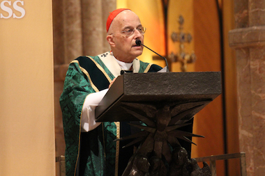 Cardinal Francis George blessed 410 married couples Sunday in Holy Name Cathedral, 735 N. State St.