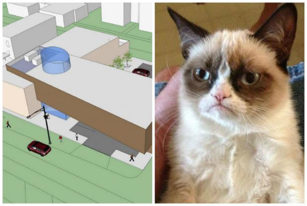 Plans for a two-story building include cage-free cat rooms and a veterinary clinic.