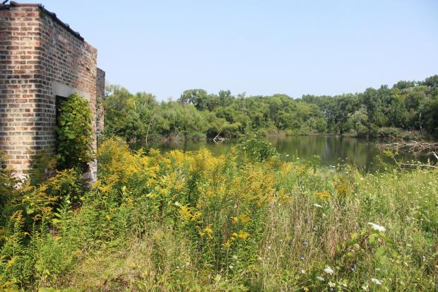 The West Ridge Nature Preserve is a planned 20-acre park at the edge of Rosehill Cemetery.