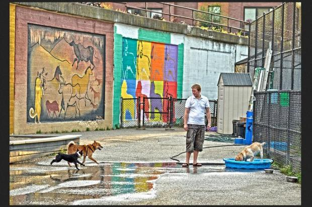 Two Bucktown dog parks which abut the Bloomingdale trail will close Monday as construction of the trail begins.  Walsh Park at 1722 N. Ashland Ave. will close for the duration of the construction while Churhill Park at 1825 N. Damen is only expected to close for about two weeks, as murals along the fall inside the park are removed.