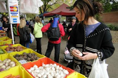 Jessie Weingartner looks over cloves of garlic at the 2013 Wicker Park Farmers Market.