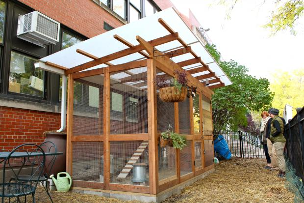 Oscar Mayer Magnet School in Lincoln Park started a chicken coop with six chickens this school year.