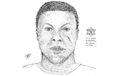 Police released a sketch of a man suspected in the sexual assault of a woman in Lakeview Sunday morning, Nov. 3, 2013.