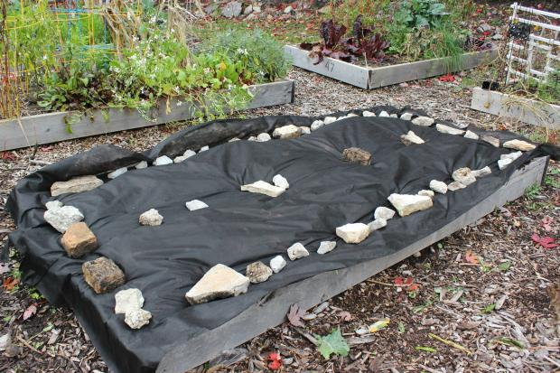 As the gardening season comes to a close, thoughts turn to prepping the bed for next year.