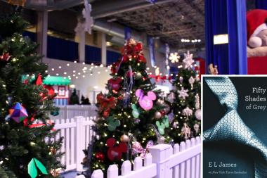 "A tree inspired by the erotic novel ""Fifty Shades of Grey"" was removed from Navy Pier's Festival Hall floor before Winter WonderFest kicked off Friday."