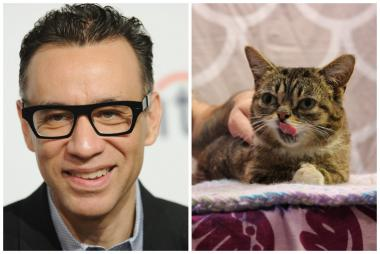 Comedian Fred Armisen and cat celebrity Lil Bub are set to join Second City for its 24-hour marathon.