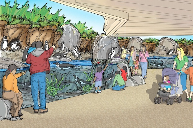 Lincoln Park Zoo  on Wednesday unveiled plans for state-of-the-art African penguin and polar bear habitats.