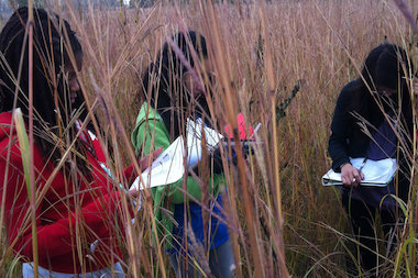 "Students at Haines Elementary school participate in a field trip to Argonne National Laboratory to learn about prairie restoration, part of a ""blended learning"" project."