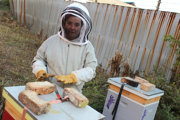 "Yojo Shaw wants to bottle her ""extremely local"" Bridgeport honey over the summer."