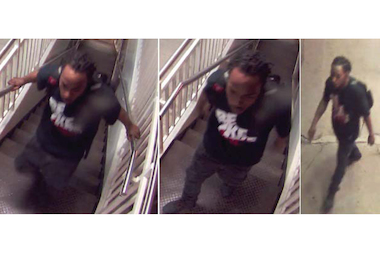 Police are questioning a man in connection with an attempted sexual assault on the Blue Line early Tuesday.