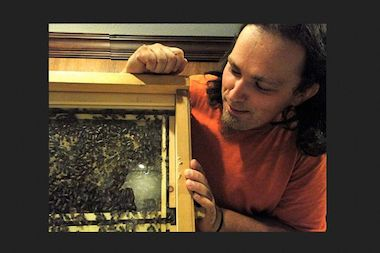 Learning how to keep bees is one of 50 free classes offered by Learnapalooza on Saturday.