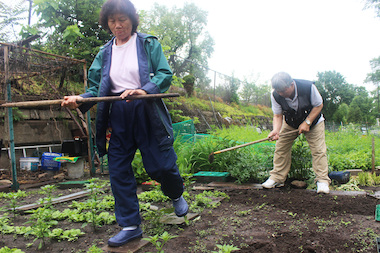 Ae Lee and her husband work the dirt at a community garden that would need to be removed to make way for a new Metra station on Ridge Avenue.
