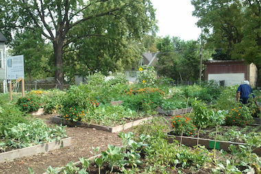 A free gardening class for local residents is available on June 19, 2014 in Englewood.
