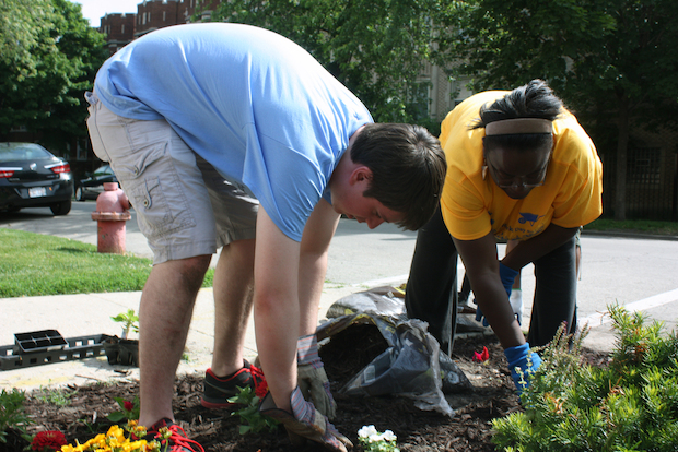 About 60 people turned out at a neighborhood beautification event in Chatham Saturday morning.