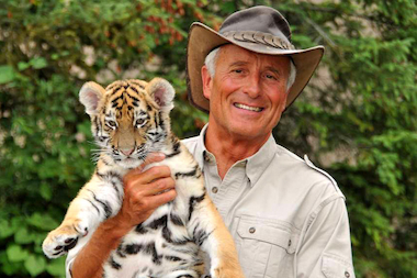 """Jungle"" Jack Hanna will bring a cheetah, palm civet and black-footed penguin to a June 19 dinner in support of the launch of ""WildChicago,"" an online series showing the natural world around Chicago."
