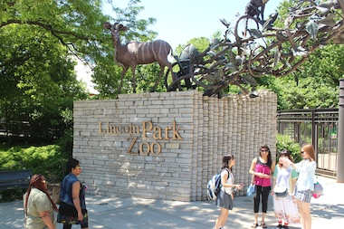 The Lincoln Park zoo will feature live music from local artist and beers from the Lagunitas Brewing Company brewed here in Chicago.