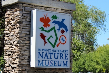 Discovery Day will take place at the Nature Museum Saturday.