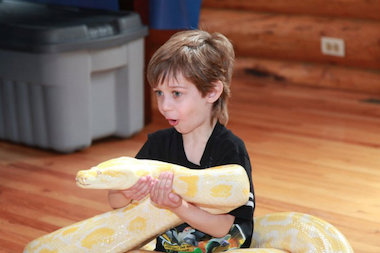 The free show offers kids an up-close, educational look at reptiles.