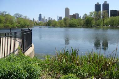 The North Pond Sanctuary.