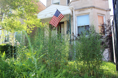Raymond and Kathryn Ward are suing the city after they were fined for uncut weeds on their lawn on Morse Avenue.