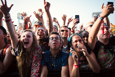 Fans cheer during a set at Lollapalooza 2014.