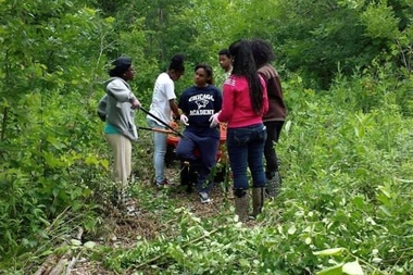 During the summer, students worked at the Dunning Read Conservation Area as part of After School Matters, working to rid the site of Buckthorn and other non-native, invasive species while leading hikes.